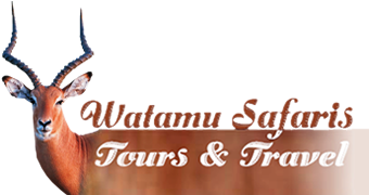 Watamu Safaris Ltd
